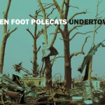 Ten Foot Polecats make the blues real on Undertow CD