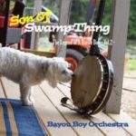 Bayou Boy Orchestra provide plenty of tasty country, Louisiana, blues flavor on Son Of Swamp Thing